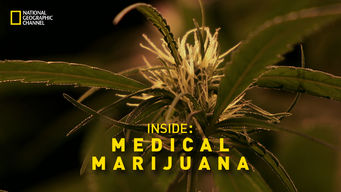 Inside: Medical Marijuana (2011)