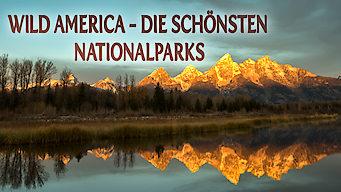 Wild America - Die schönsten Nationalparks (2016)