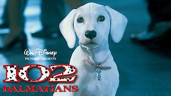 Is 102 Dalmatians 2000 On Netflix France