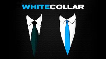 White Collar (2014)