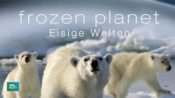 Frozen Planet – Eisige Welten (2011)
