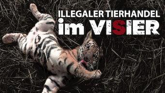 Illegaler Tierhandel im Visier (2011)