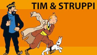 Tim und Struppi (1992)