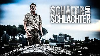 Schäfer und Schlachter (2016)