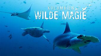 Kolumbien: Wilde Magie (2015)
