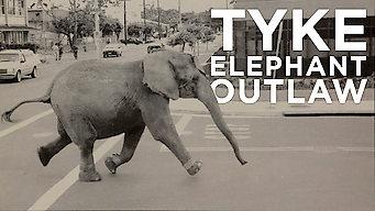 Tyke Elephant Outlaw (2015)