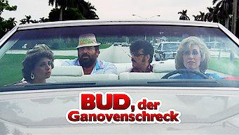 Bud, der Ganovenschreck (1983)