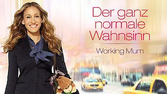 Der ganz normale Wahnsinn – Working Mum (2011)
