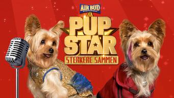 Pup Star – Sterkere sammen (2017)