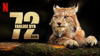 72 farlige dyr: Asia (2018)