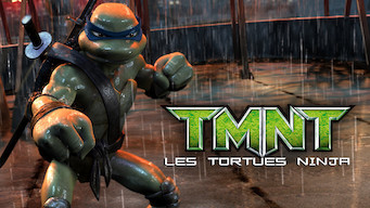 TMNT : les tortues ninja (2007)