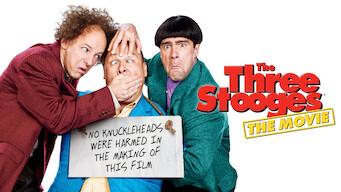 Die Stooges – Drei Vollpfosten drehen ab (2012)