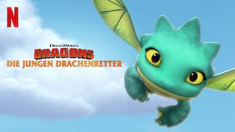 Dragons – Die jungen Drachenretter (2019)