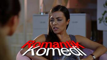 Die Romantische Komödie (2010)