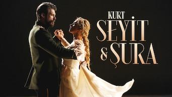 Kurt Seyit ve Sura (2014)