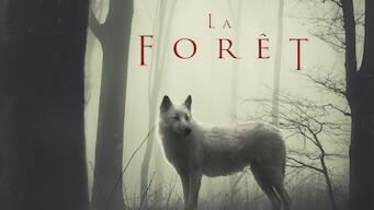 La Forêt (2017)