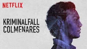 Kriminalfall: Colmenares (2019)