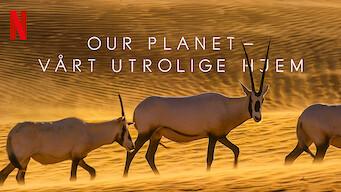 Our Planet – Vårt utrolige hjem (2019)