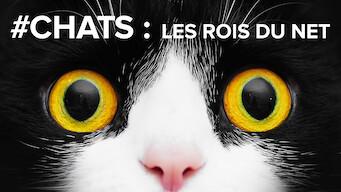 #Chats : Les rois du net (2020)
